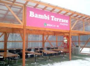 バンビテラス